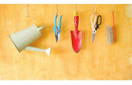 5 כלים חינמיים לשדרוג התוכן שלך